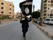 اليمن: تنسيق حوثي مع القاعدة وداعش لتنفيذ عمليات إرهابية
