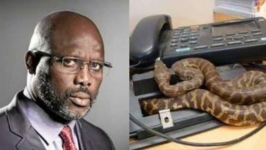 بالصور.. ثعابين تمنع رئيساً من دخول مكتبه