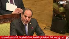 African summit gives Sudan military more time for reforms, says Sisi