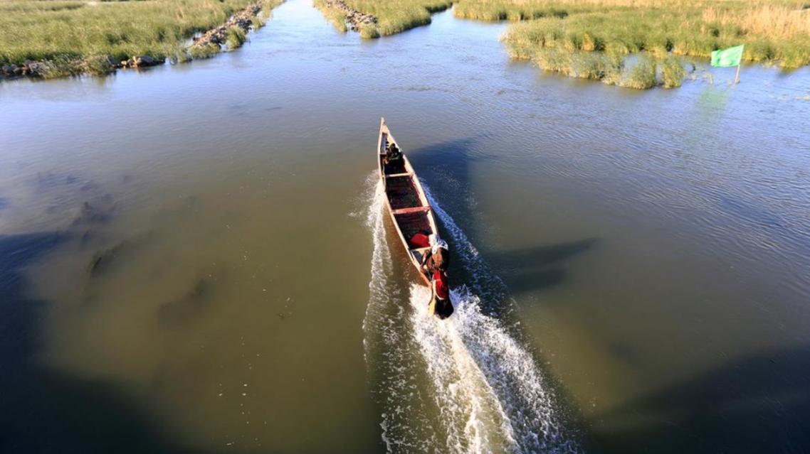 Iraq marshlands - Reuters