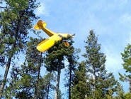 فيديو يكشف ماذا حدث لقائد هذه الطائرة العالقة فوق شجرة