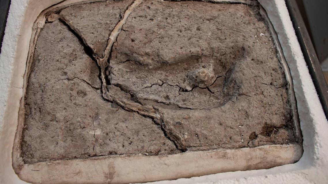 Anicent footprint pictured in Osorno, Chile. (Universidad Austral de Chile, Laboratorio de Sitio Pilauco via Reuters)