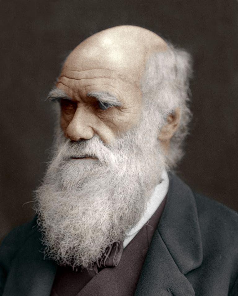 صورة فوتوغرافية ملونة اعتمادا على التقنيات الحديثة لشارل داروين