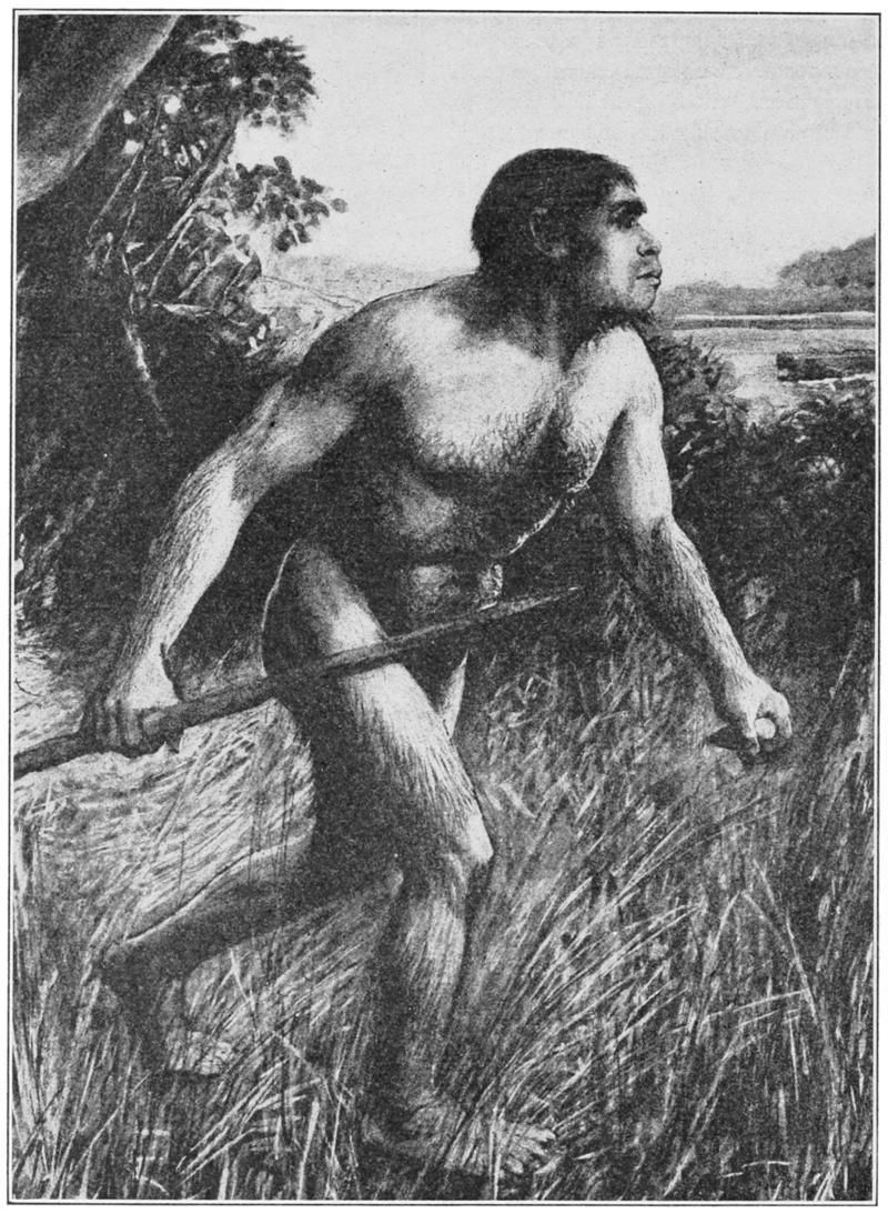 رسم تخيلي يعود لسنة 1913 لإنسان بيلتداون