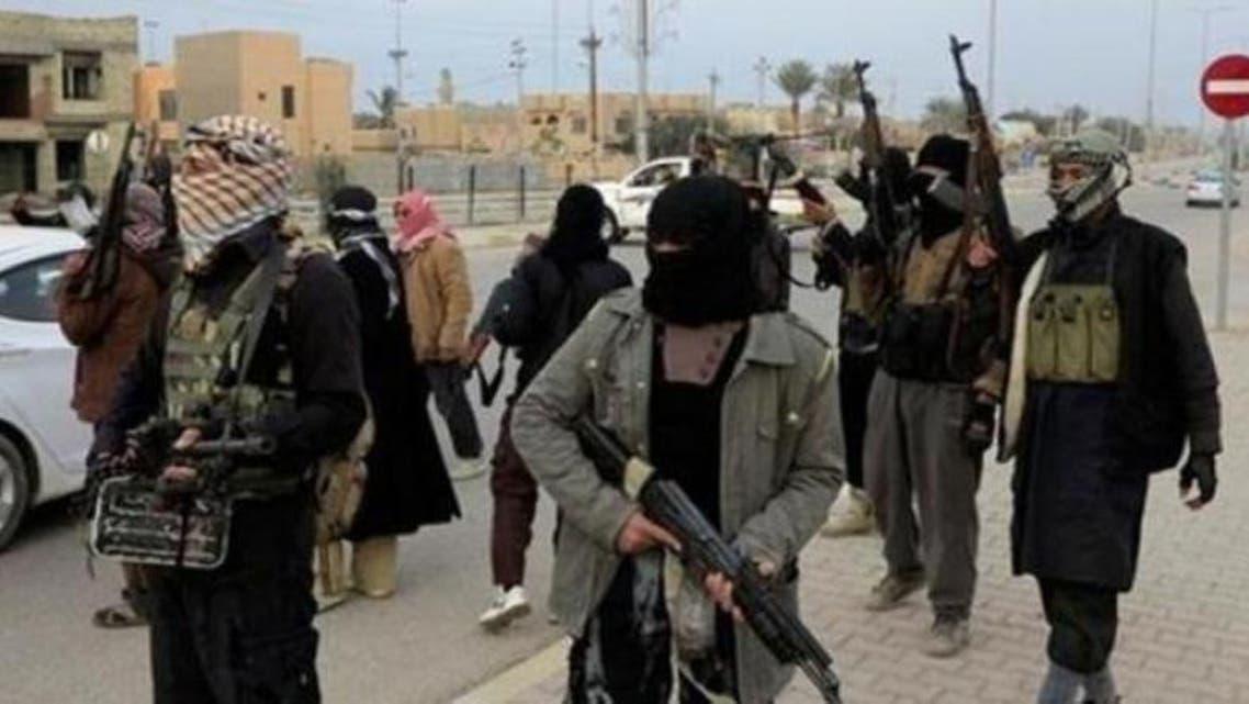 Egypt Militants