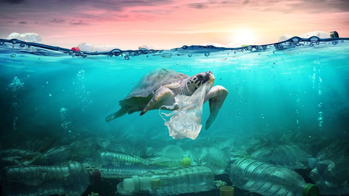 Plastic Pollution In Ocean - Turtle Eat Plastic Bag - Environmental Problem - Stock image