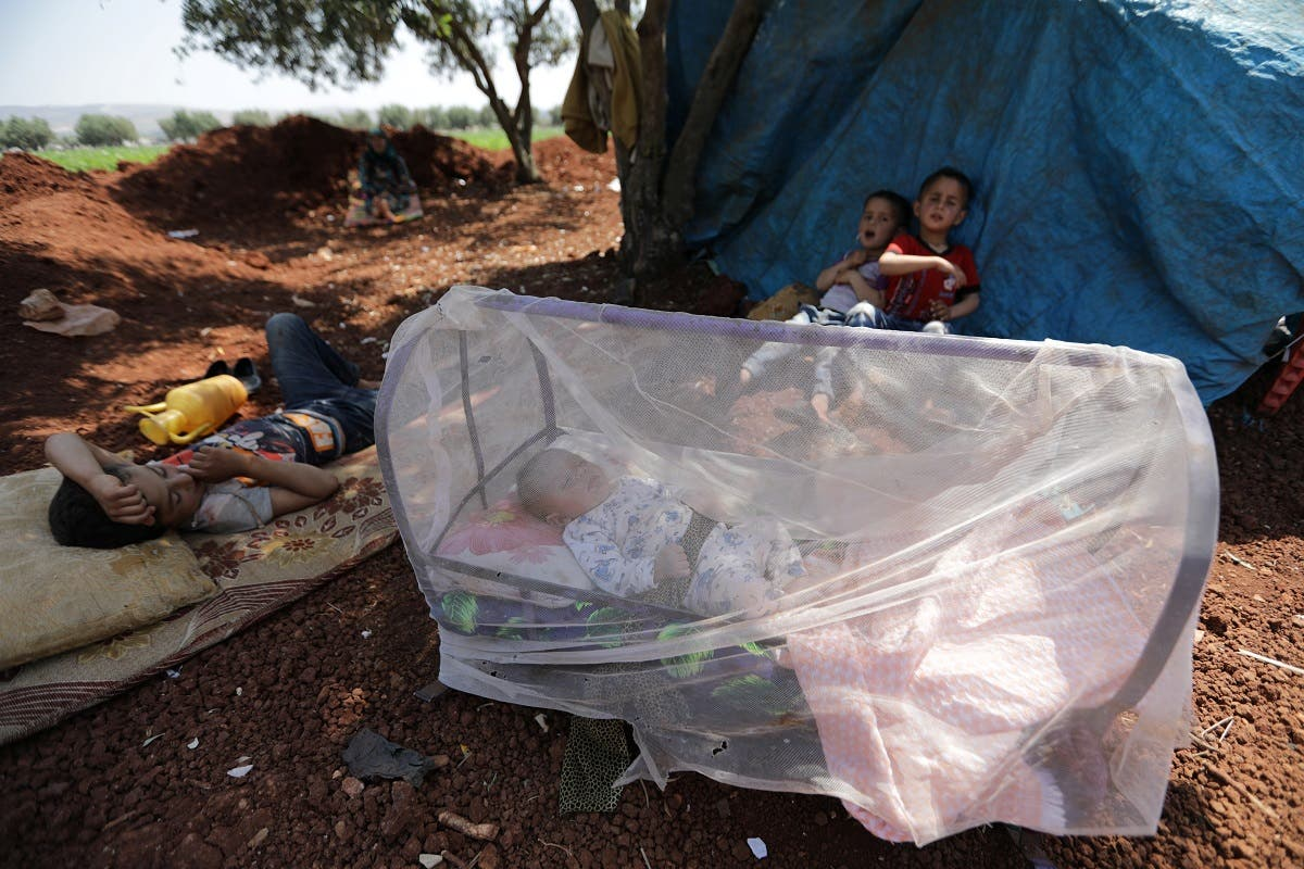 A displaced Syrian baby sleeps in a bed covered with a mosquito net in an olive grove at Atmeh town, Idlib province, Syria May 15, 2019. (Reuters)
