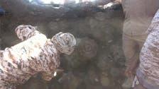 فيديو.. اكتشاف نفق حوثي مزروع بالمتفجرات في الحديدة