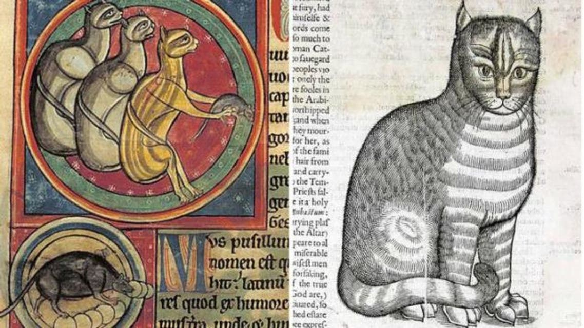رسم تخيلي لعدد من القطط بالقرون الوسطى