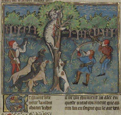 رسم تخيلي لعملية ملاحقة إحدى القطط بالعصور الوسطى