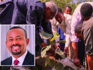 إثيوبيا تتصدى لإرهاب البيئة بجيش جنوده 4 مليارات شجرة