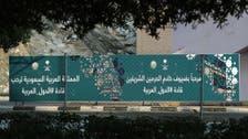 Qatari Emir, Turkish President, and Lebanese FM not attending Mecca summits