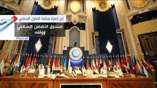 شاهد من ماذا تتكون منظمة التعاون الإسلامي.. ثاني أكبر منظمة دولية