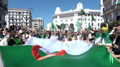 الجزائر.. الوساطة تعد مشروع قانون لتنظيم الانتخابات