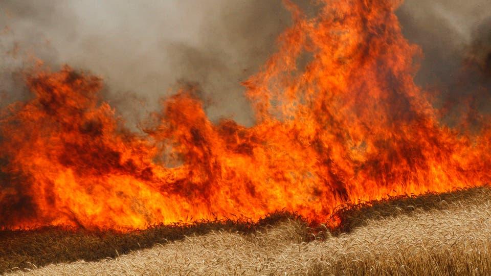 مسؤول عراقي يناشد الحكومة للسيطرة على حرائق المزارع