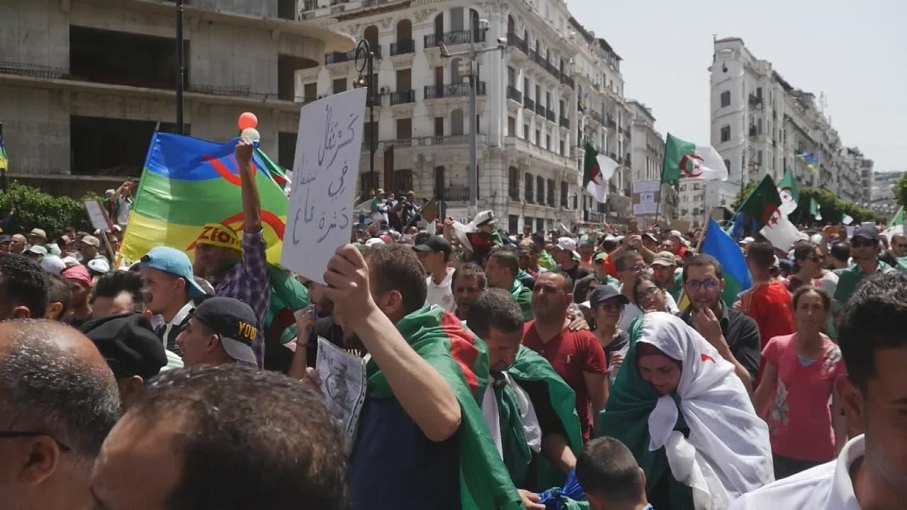 بعض أعلام الأقليات في الجزائر إلى جانب العلم الوطني