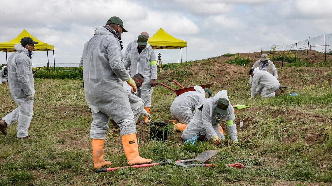 Forensic workers and experts inspect a zone during the exhumation of a mass-grave of hundreds of Yazidis killed by Islamic State (IS) group militants in the northern Iraqi village of Kojo in Sinjar district on March 15, 2019. (AFP)