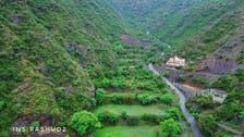 شاهد جبال جنوب السعودية مكسوة بغابات خضراء