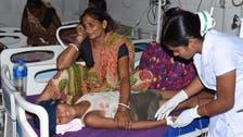 Encephalitis from lychees kills 31 children in India