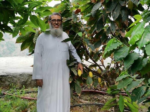 سعودي ينجح في زراعة الكاكاو في جازان.. وهذه قصته