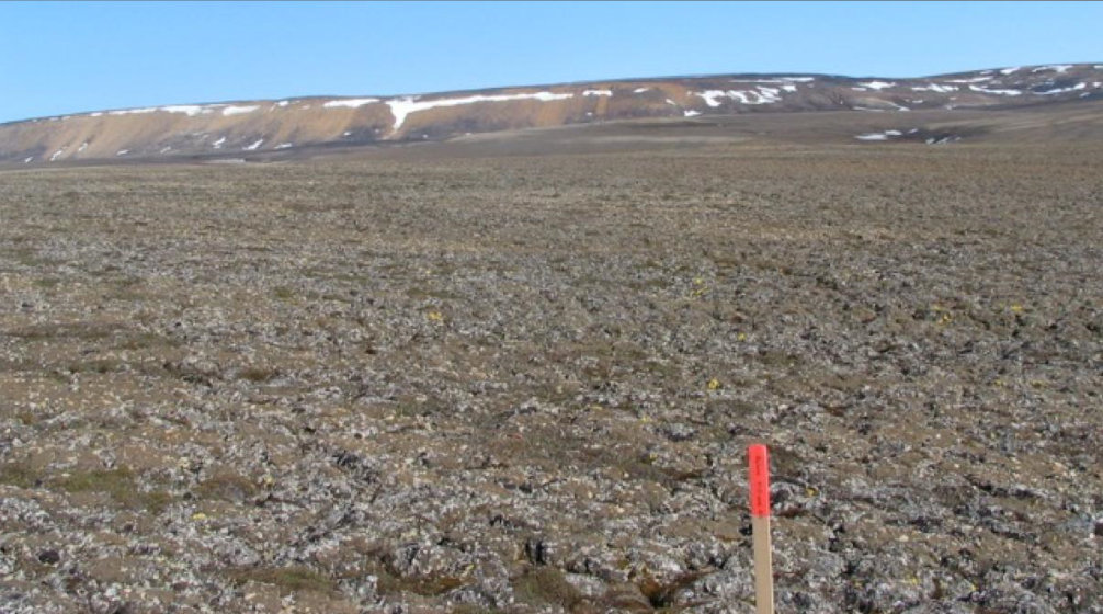 General view of a landscape of intact Arctic permafrost in Canada. (Reuters)