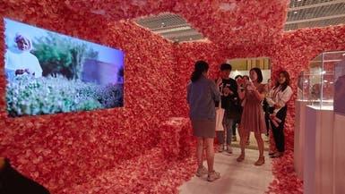 بالصور.. الورد الطائفي يدهش فتيات كوريا الجنوبية