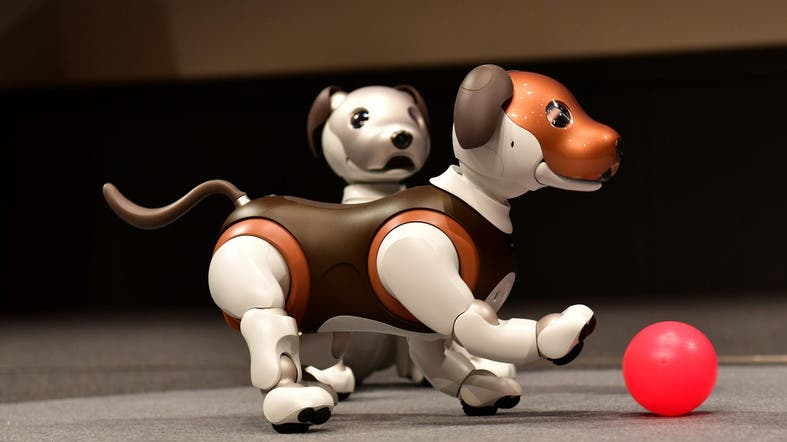 Man's best friend' is a robot dog to some with dementia - Al Arabiya