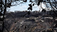 Greece wildfires: Four more villages evacuated on Evia island