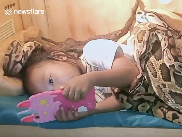فيديو مخيف.. طفلة تشاهد الرسوم المتحركة وسط الثعابين