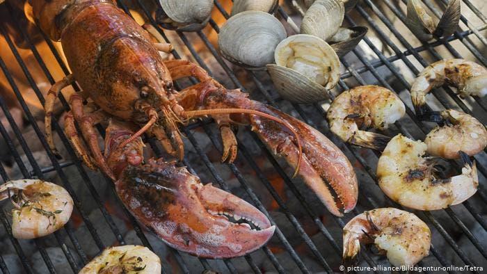 صورة من أطباق الحفلات الفاخرة للوزير