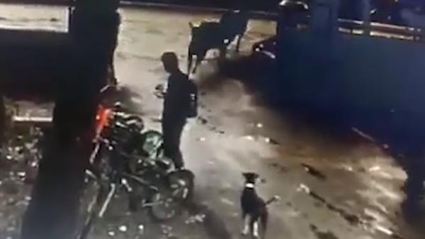"""هجوم """"ثوري"""" على طالب.. وفيديو وحشي يوثق"""