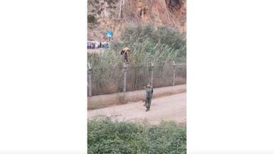 """قصة فيديو """"ودي"""" اخترق الحدود الجزائرية المغربية المغلقة"""