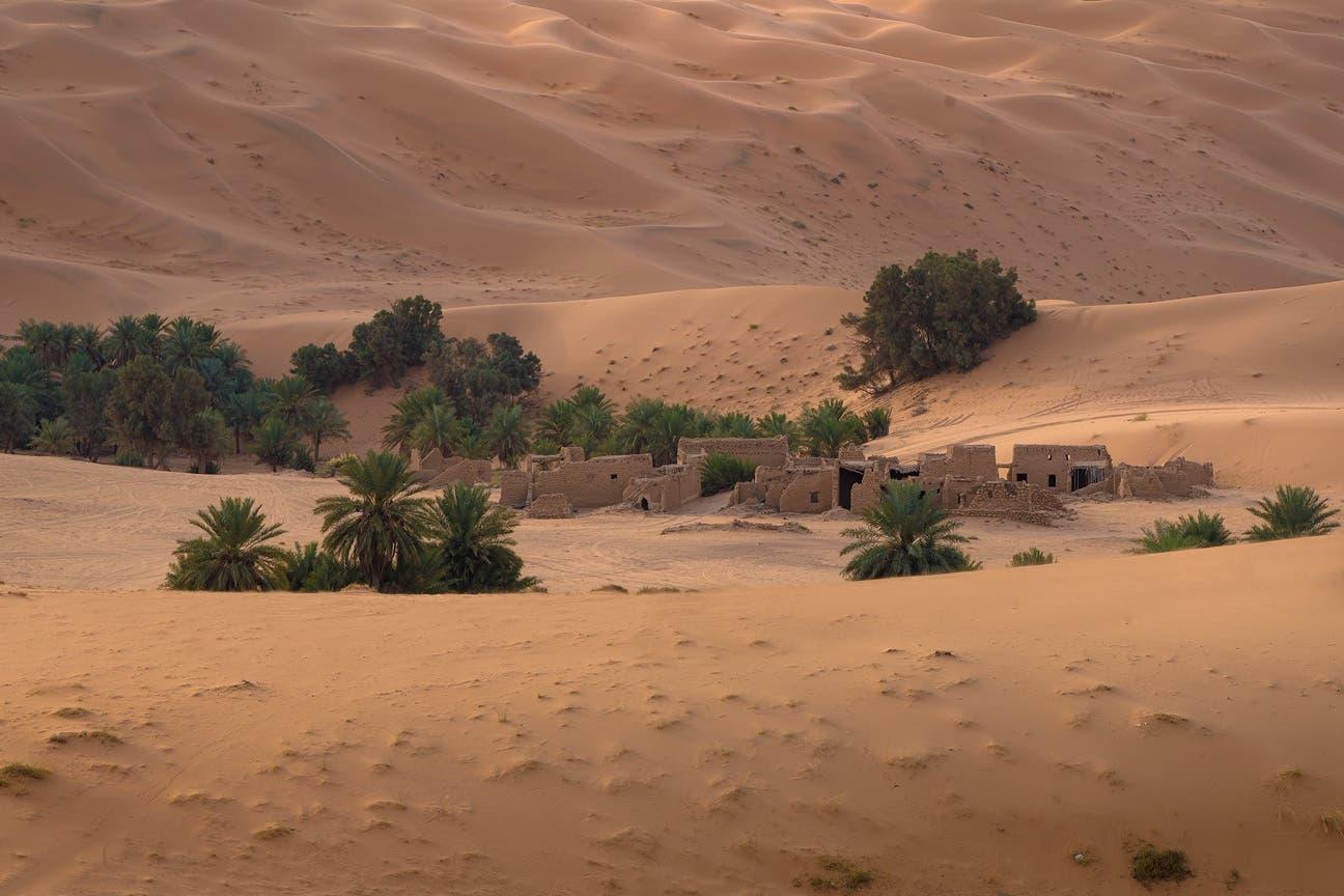 يمكن ممارسة كثير من لارياضات الصحراوية بالقرب من الواحات
