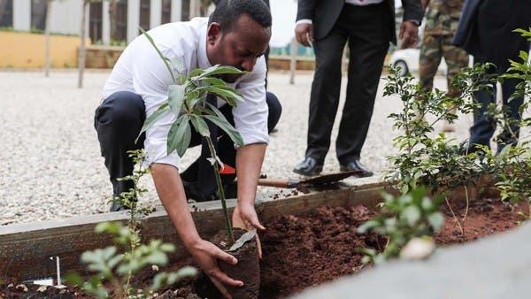 لمكافحة التصحر.. إثيوبيا تزرع 224 مليون شجرة في يوم واحد