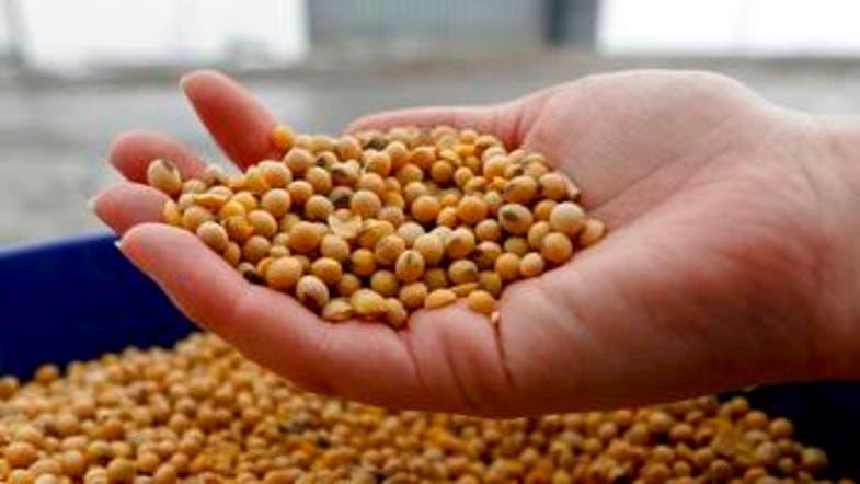 China halts purchase of US farm products - Al Arabiya English