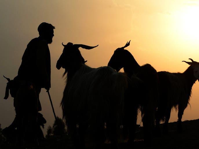 ماذا يفعل الحاج في يوم النحر؟