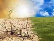 الأمم المتحدة تحذر.. تغير المناخ سيطال الطعام!