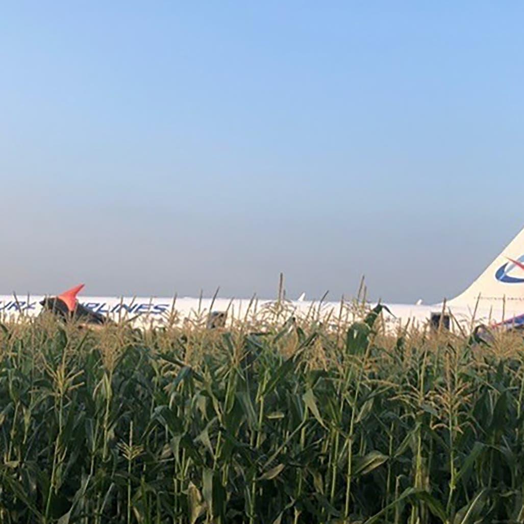 طيور تجبر طائرة ركاب روسية على الهبوط.. وتخلف 23 مصاباً
