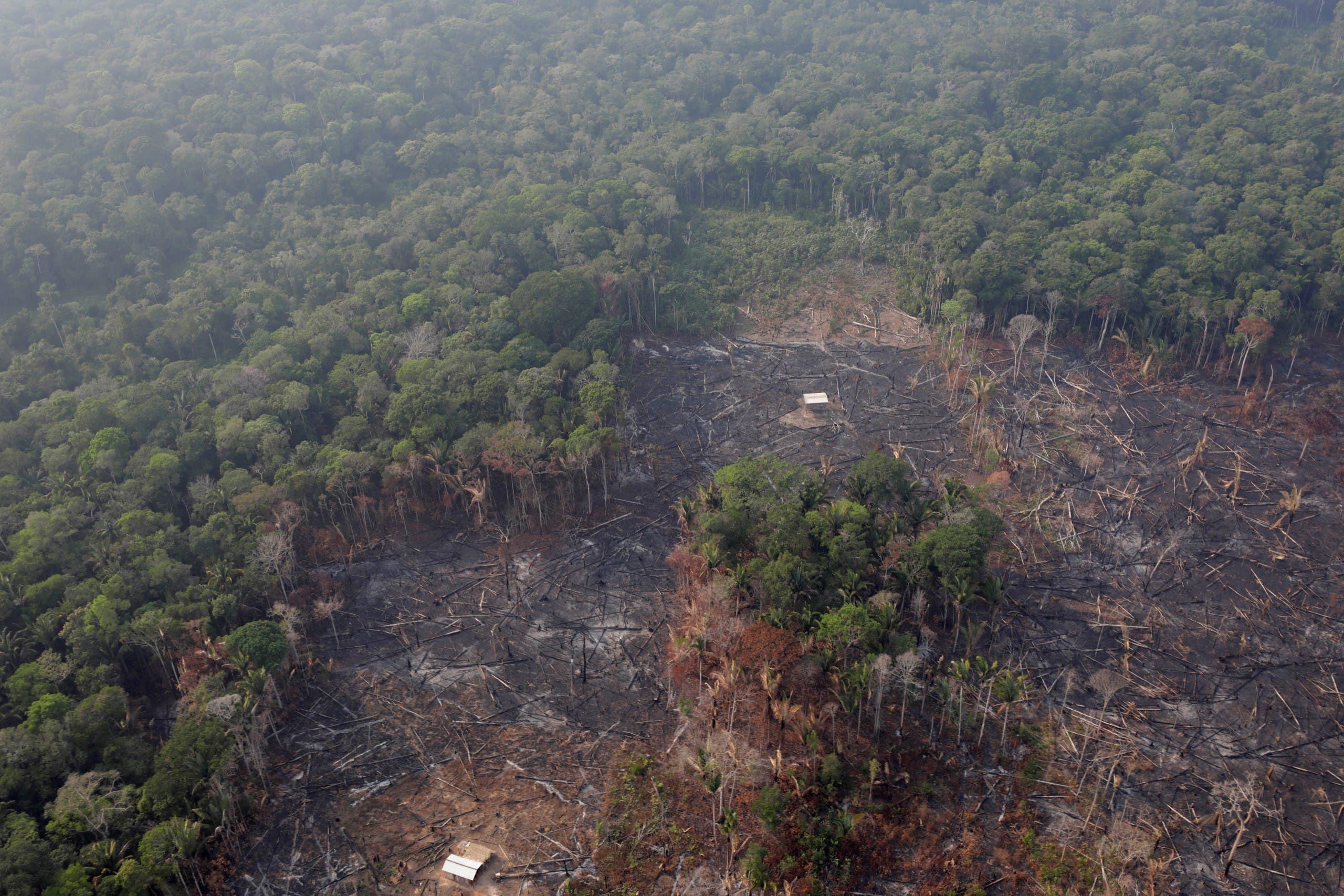 حرائق الأمازون- رويترز