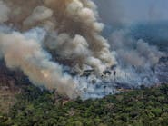 حرائق الأمازون مستمرة.. والبرازيل ترفض المساعدة
