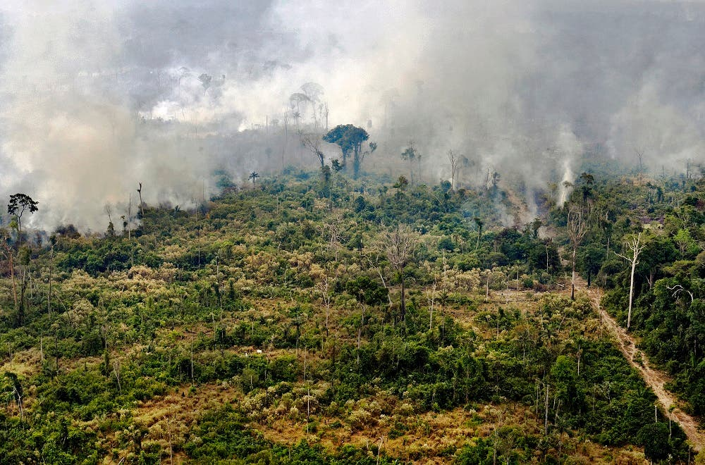 Amazon forest fire (File photo: AFP)