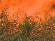 تراجع حرائق الأمازون في سبتمبر بعد ارتفاع مقلق