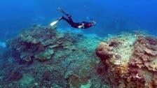 Australia awaits Great Barrier Reef World Heritage ruling