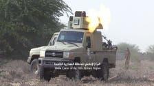 فيديو.. الجيش اليمني يحرر 15 كم في حرض ويأسر 9 حوثيين
