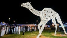 Saudi Arabia unveils largest camel replica in the world at Taif festival