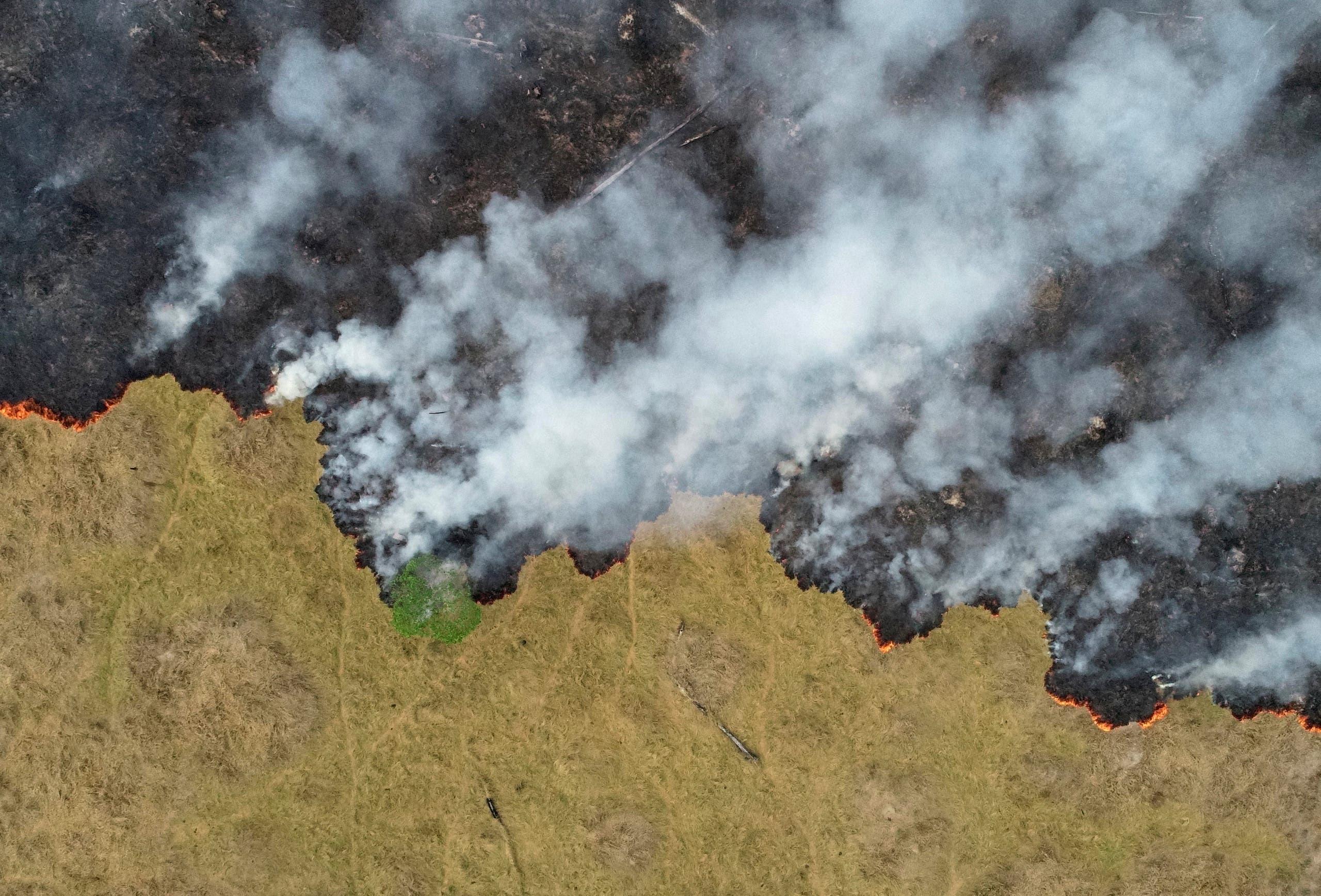 من حرائق الأمازون (رويترز)