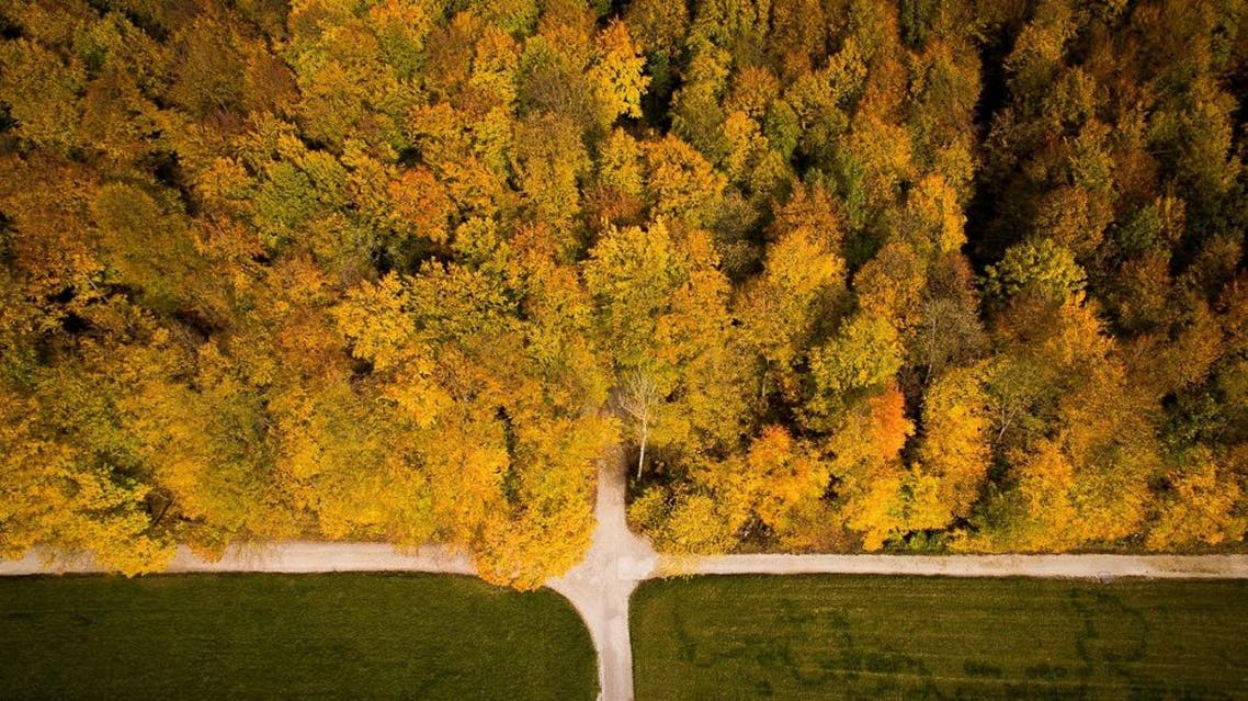 An aerial picture taken on November 6, 2018 shows roads and trees with autumn colours in Bielefeld, germany. (AFP)