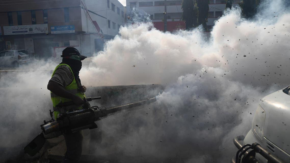 Flies overwhelm Pakistan's Karachi (File: AFP)