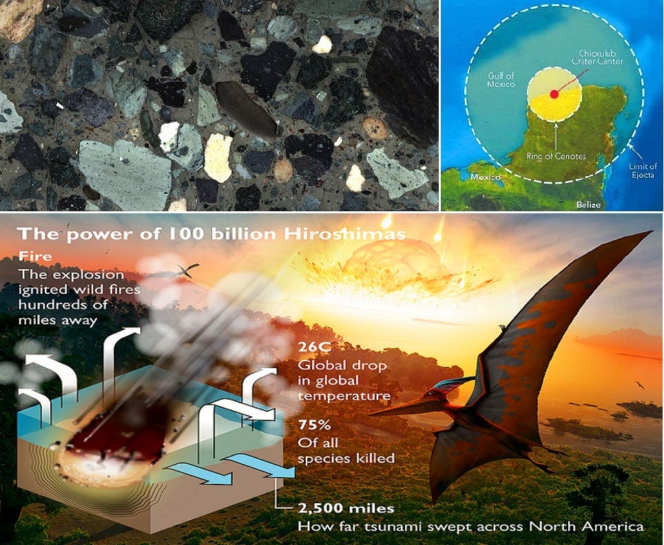 الارتطام قضم قسما من شبه جزيرة يوكاتان، وحفر فوهة عرضها 145 كيلومترا، والى اليسار صورة لبعض ما استخرجوه منها