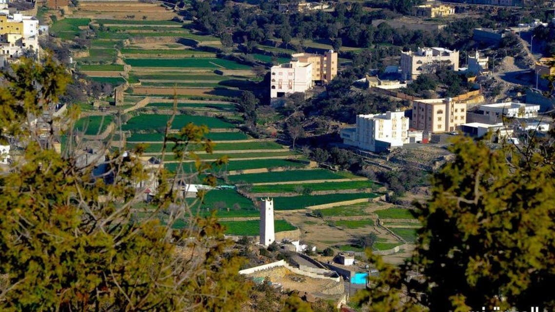 KSA: green valley